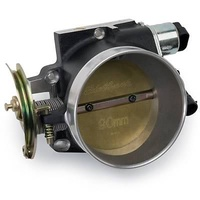 Air & Fuel Delivery Throttle Bodies