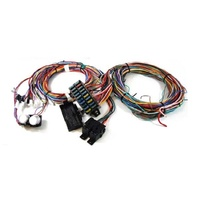 RPC Universal 12 Circuit Wire Harness Kit RPCR1002X